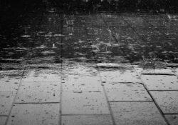 Trods regn og blæst