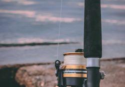 Har du det nødvendige fiskegrej?